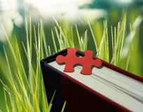 Puzzle sur un livre Image stock