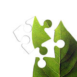 Puzzle verde del foglio royalty illustrazione gratis
