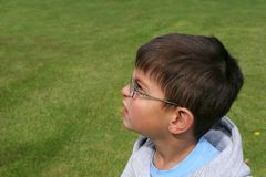 Puzzled Little Boy Royalty Free Stock Photo