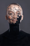 Puzzles painted on face. Puzzles painted on a beautiful woman`s face Stock Photo