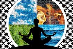 Puzzlespiel-Weltverstand stockfotos