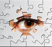 Puzzlespielauge Stockbild