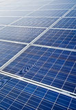 Pv solar modules Royalty Free Stock Photos