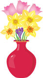 Vase of spring flowers. A red vase with a selection of spring flowers including daffodils,tulips and crocus Royalty Free Stock Photo
