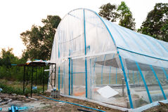 PVC Structured Greenhouse in Rural of Thailand Stock Image
