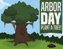 Old Tree and Sapling View for Arbor Day Celebration, Vector Illustration. Rooted ancient tree and growing sapling in a beautiful forest view to celebrate Arbor royalty free illustration