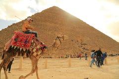 Pyamid and camel rider Stock Image