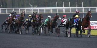 pyatigorsk лошади hippodrome caucasus северное участвуя в гонке Россия Стоковое фото RF