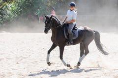 pyatigorsk лошади hippodrome caucasus северное участвуя в гонке Россия Стоковое Изображение