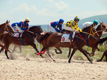 PYATIGORSK, RÚSSIA - 7 DE JULHO: raça para os carvalhos premiados grandes em julho Imagem de Stock Royalty Free