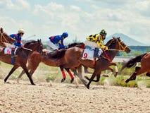 PYATIGORSK, RÚSSIA - 7 DE JULHO: raça para os carvalhos premiados grandes em julho Fotografia de Stock
