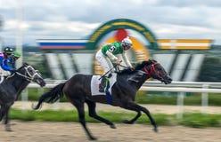 Horse racing for the prize of Granita in Pyatigorsk. Royalty Free Stock Photos