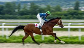 Horse racing for the prize of Friendship of Peoples in Pyatigors Royalty Free Stock Image