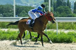 Horse racing for the prize in honor Kazan Hippodrome in Pyatigo royalty free stock photo