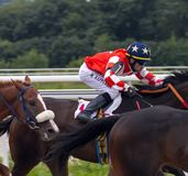 Horse racing for the prize in honor of the Air Force Day in Pyatigorsk. Stock Image