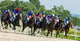 Horse racing for the prize of Derby in Pyatigorsk. stock photo