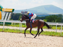 PYATIGORSK,RUSSIA - JULY 7: race for the Big prize OaKS. Mare Sa Stock Image