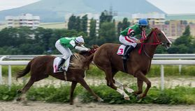 Horse racing for the prize of the Letni  in Pyatigorsk. Royalty Free Stock Image