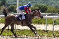 Horse racing for the prize of the. PYATIGORSK, RUSSIA - MAY 20,2018:Horse racing for the prize of the `Probni` in Pyatigorsk.Ahead - master jockey Bikbaev on the Stock Photography