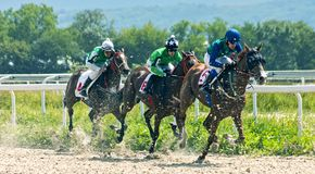 Horse racing for the prize in honor of the mare Big Tric stock image
