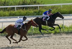 Horse racing in Pyatigorsk. royalty free stock photography