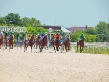 PYATIGORSK, RUSSLAND - 7. JULI: Anfang des Rennens für die großen prize Eichen Stockbild