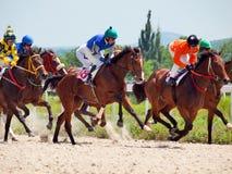 PYATIGORSK, RUSSLAND - 7. JULI: Rennen für die großen prize Eichen im Juli Lizenzfreie Stockfotografie