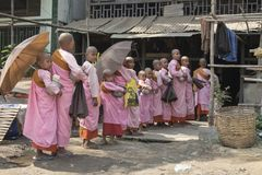 Young Buddhist nuns queuing up for alms Royalty Free Stock Photo