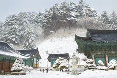 Pyeongchang, Corea - 18 de febrero de 2015: Paisaje del invierno con los árboles nevados y el templo asiático Odaesan Woljeongsa Imagenes de archivo