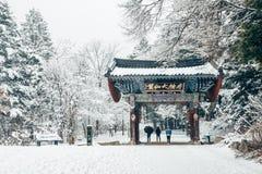 Pyeongchang, Corea - 18 febbraio 2015: Tempio asiatico Odaesan Woljeongsa con la strada dell'albero di abete dell'inverno nevoso Fotografie Stock