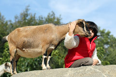 Pygmy goat and girl Royalty Free Stock Photos
