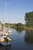 pykniczną cieszyć się rodzinną rzekę Obraz Royalty Free