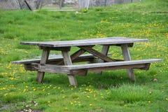 Pykniczny drewniany stół z ławkami w pinkinu i bbq rodzinnym terenie w parku Fotografia Royalty Free