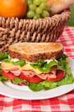 Pykniczny kosz wznoszący toast baleron i serowa kanapka Obraz Royalty Free