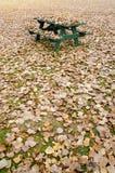 Pykniczny stół chujący pod złotymi jesień liśćmi Fotografia Royalty Free