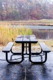 Pykniczny stół przy bagnami Zdjęcie Stock