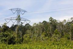 Pylône de l'électricité dans la jungle, Brunei photo libre de droits
