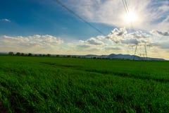 Pylône électrique Photos libres de droits