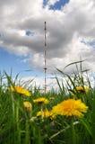 Pylône de communication par radio Images stock