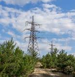 Pylône et lignes électriques de transmission de l'électricité dans une forêt Photos libres de droits