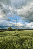 Pylon In Barley Royalty Free Stock Photography