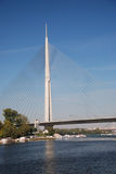 Pylon bridge Stock Image