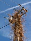 Pylon för elektricitetspelarlyktstolpe Fotografering för Bildbyråer