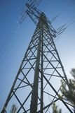 a pylon in the middle of the forest stock image