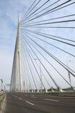 Pylonbrücke über Ada, Belgrad - Serbien Stockfoto
