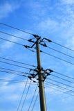 Pylonen in de hemel Stock Afbeeldingen