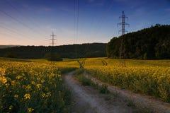 Pylonen van machtslijn op verkrachtingsgebied na zonsondergang stock afbeeldingen