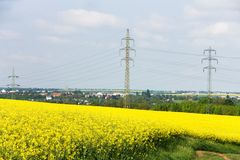 Pylons in a field Royalty Free Stock Image
