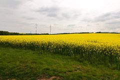 Pylons in a field Royalty Free Stock Images