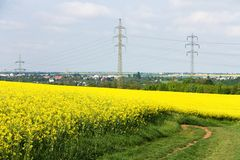 Pylons in a field Royalty Free Stock Photo